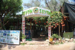 Olympos-Zeytin-Pansiyon-001