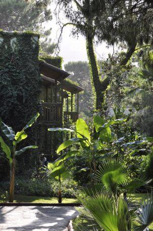 Amara-Club-Nature-Otel-0064
